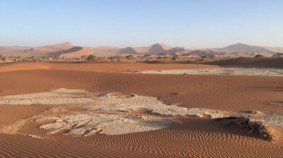 Des trains pas comme les autres en Namibie